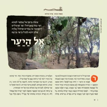 מדור טיולים וידיעת הארץ מתוך גליון יער מגזין לילדים אדם צעיר