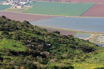 טיול עם ילדים: העמק הנעלם בגלבוע ואירוס הגלבוע